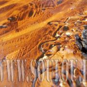 *Pinecone* Größe 40 x 50 cm Leinwand gespachtelt + Tannenzapfen gelb orange hellbraun braun Tannenzapfen Detail1gefertigt von Marion Heine Soulous Art